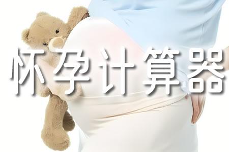 怀孕计算器 - 孕期计算器 - 预产期计算