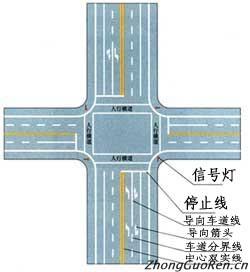 信号灯 路口的停止线 交通标志大全 图解交通