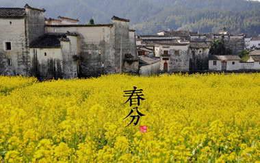春分 - 二十四节气 - 春分的图片