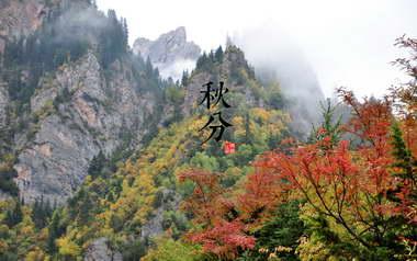 秋分 - 二十四节气 - 秋分的图片